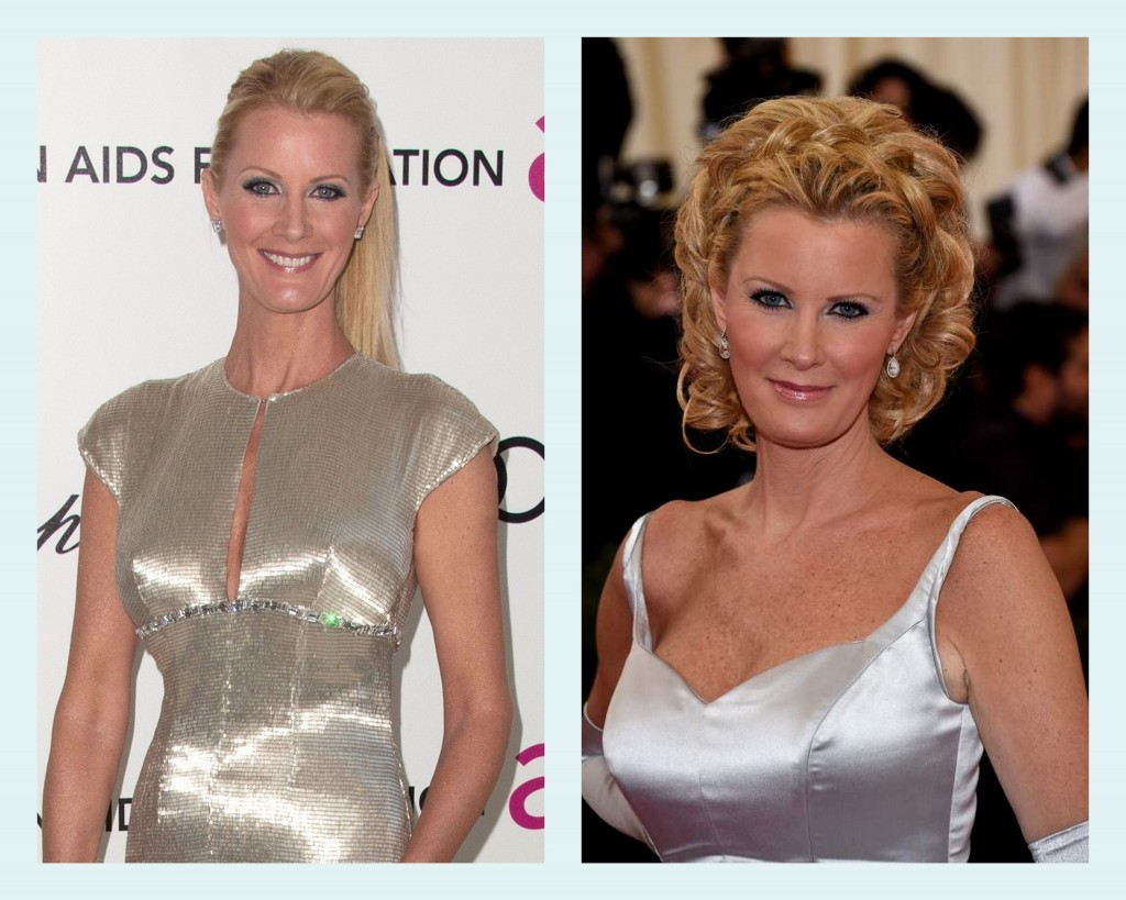 sandra lee gown bodice comparison