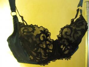 The Augusta teal bra.